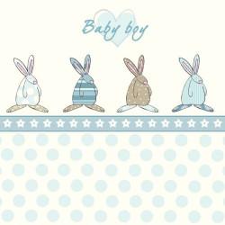 Baby boy kort