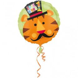 Fisher Price Folieballong