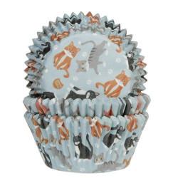 Muffinsformar Katter