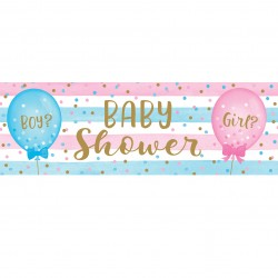 Banner Gender Reveal Babyshower
