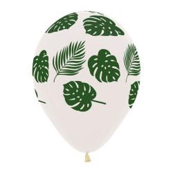 Ballonger Tropiska Blad