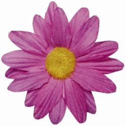 Blommor Hot Pink