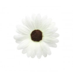 Blommor Vita