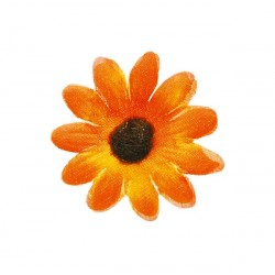 Blommor Orange