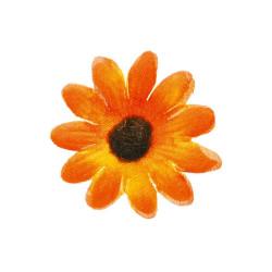 Blommor Orange