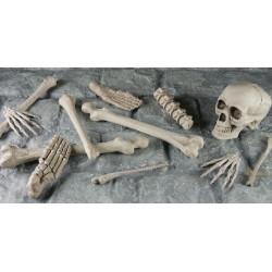 Skelett i nätpåse
