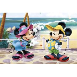 Tårtoblat Disney Rektangulär