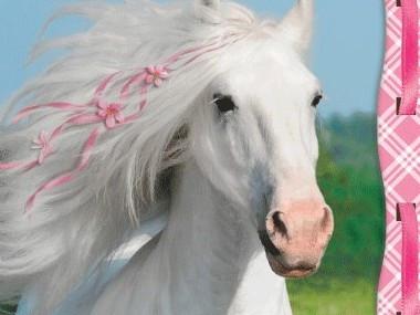 Vita Hästen