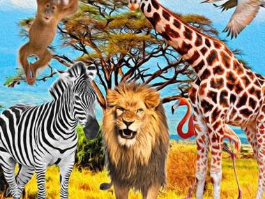 Safariparty